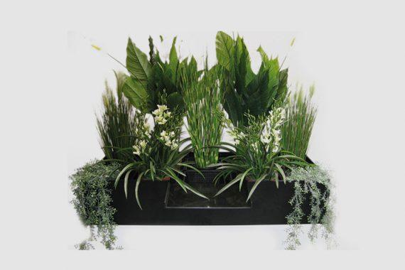 Filtreco - Plants filter